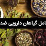 گیاهان-دارویی-ضد-دیابت - طب سنتی بم
